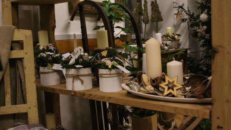 Vánoční výstava 2017 - zahradnické obory