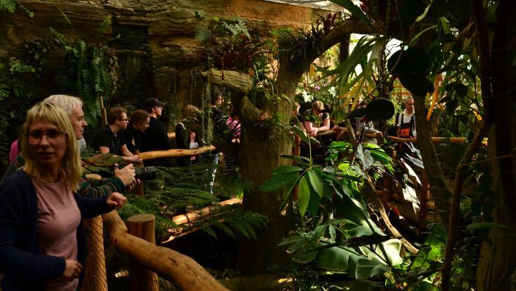 Exkurze do brněnských botanických zahrad