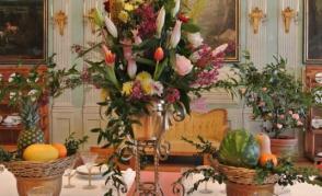 Kamélie, zimní královna květin