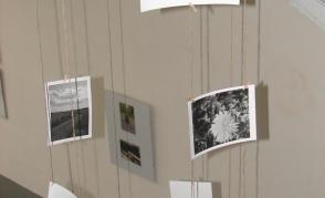Fotografická soutěž - 2. ročník
