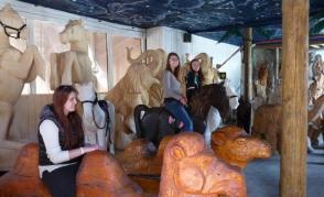 Koně v Halouzkově galerii