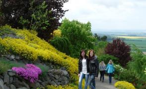 Tařice a holky Arboretu Makču Pikču