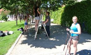 Florální objekty v Klášterních zahradách