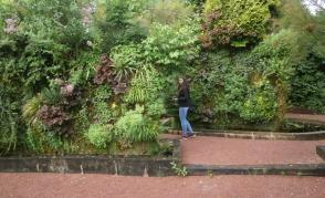 Vertikální zahrada, Chaumont