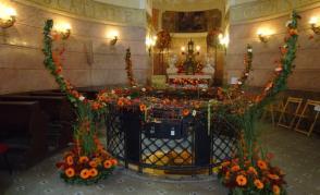Rozkvetlé památky v Olomouci