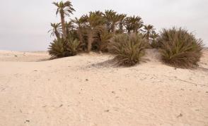 Expedice Omán 2016
