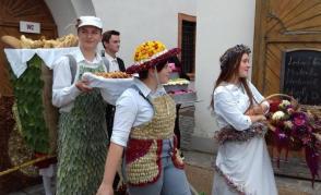 Květinové show 2017 - 15. ročník